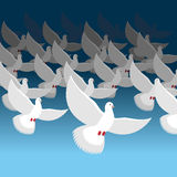 Flock of doves into sky. Blue cloud and white pigeons. flock of Royalty Free Stock Image