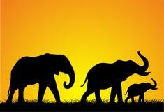 Elephant Silhouette Royalty Free Stock Photos