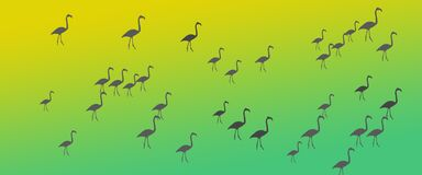 Flock för grupp för flamingo för titelradbakgrundsfåglar stock illustrationer