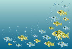 Flock of fishes Royalty Free Stock Photo