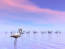 Flock of flamingos - 3D render Royalty Free Stock Photos
