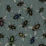 Flock of flies stock photography