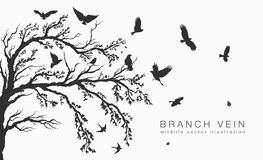 Flock of flying birds on tree branch. Tree Royalty Free Stock Image