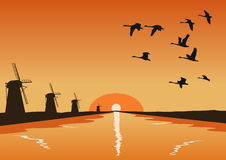 Flock of geese flying over river with mills at sunset. Flock of geese flying over river with mills at the sunset Stock Photos