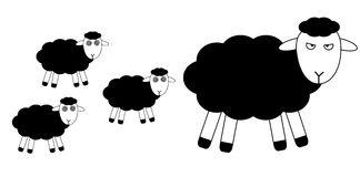 Flock of hypnotized sheeps Royalty Free Stock Photos