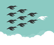 Flock of mallard flying in the sky, Leadership concept. Wild Duck Royalty Free Stock Image