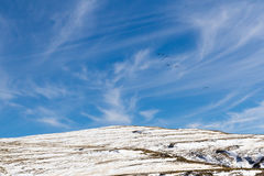 Flock Over Bokong Snowy Peaks. Birds fly over snow-capped mountain peaks, viewed from the Bokong Nature Reserve Visitors` Center in Leribe, Lesotho near the stock images