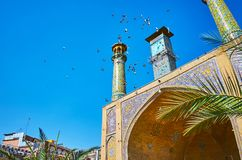 The pigeons over the Shah`s Mosque, Tehran Stock Photos