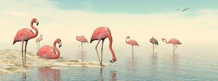Flock of pink flamingos - 3D render Stock Photography