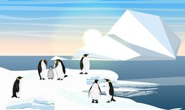 A flock of realistic emperor penguins with a chick. Coast of cold ocean or sea. Iceberg. stock illustration