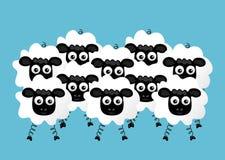 Flock of sheep. Illustration of flock of sheep on blue background Stock Image