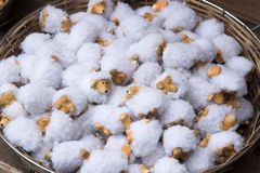 Flock of sheep dolls Royalty Free Stock Images