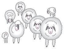 Flock of sheep/eps Royalty Free Stock Photo