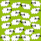 Flock of sheep on green background. Vector illustration Royalty Free Stock Image