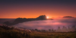 Flock of sheep in Saibi mountain at sunrise. Flock of sheep in Saibi mountain at the sunrise royalty free stock photography