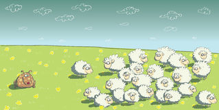 Flock of Sheep and Sheepdog Royalty Free Stock Photos