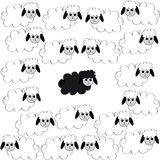 Flock of sheep on white background. With one black sheep. Vector illustration Stock Photography