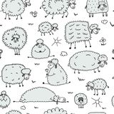 Flock of sheeps, seamless pattern for your design. Vector illustration Royalty Free Stock Photography