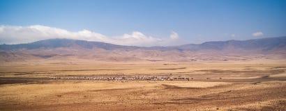 Flockar av får i en dal arkivbild