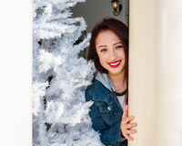 Flockats träd och julleende Arkivfoton
