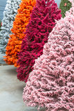 Flocked Christmas Trees Royalty Free Stock Photos