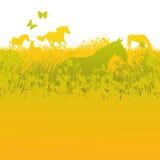 Flocken av hästar på gräsplan betar royaltyfri illustrationer