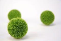 Flockige grüne Kugeln lizenzfreie stockbilder