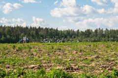 A tractor plows the field on a bright Sunny day. Rural spring landscape. Flocks of birds follow directly behind a tractor, plowing the field. They find Stock Image