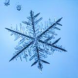 Floco bonito da neve em um claro - fim azul do fundo acima imagens de stock