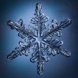 Floco bonito da neve em um claro - fim azul do fundo acima imagem de stock royalty free