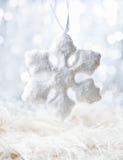 Floco branco da neve Imagens de Stock Royalty Free