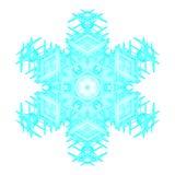 Floco da neve imagem de stock royalty free