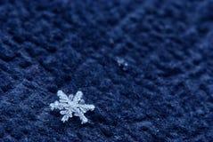 Floco de neve Foto de Stock