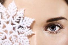 Floco de neve imagens de stock royalty free
