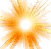 Floco de neve do ouro no branco Imagem de Stock Royalty Free