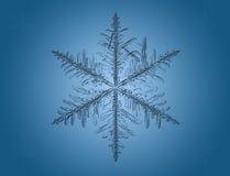 Floco de neve macro no azul ilustração do vetor
