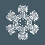Floco decorativo da neve Fotografia de Stock Royalty Free