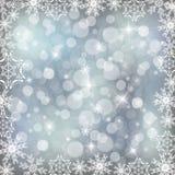 Flocon de neige argenté Photographie stock libre de droits