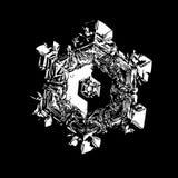 Flocon de neige blanc d'isolement sur le fond noir image stock