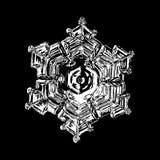 Flocon de neige blanc d'isolement sur le fond noir photos libres de droits