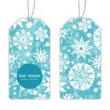 Flocon de neige décoratif de Noël de gel de vecteur Images libres de droits