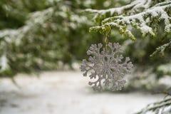Flocon de neige de décoration de Noël sur la branche de sapin photo stock