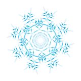 Flocon de neige fleuri illustration libre de droits