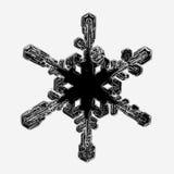 flocon de neige noir Photos libres de droits