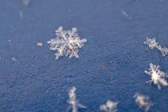 Flocon de neige réel Photos libres de droits