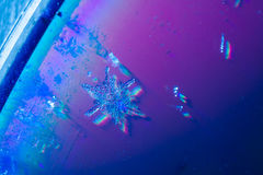 Flocon de neige réel Photographie stock libre de droits