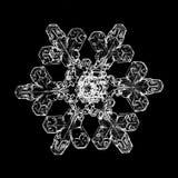 Flocon de neige sur le fond noir Photos stock