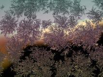 Flocon de neige sur le verre Photographie stock libre de droits