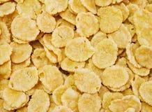Flocons d'avoine Image libre de droits