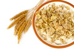 Flocons d'avoine Image stock